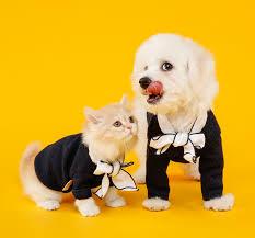 ペットショップは悪!?保護犬/保護猫の引き取りを強要する理由と対処法